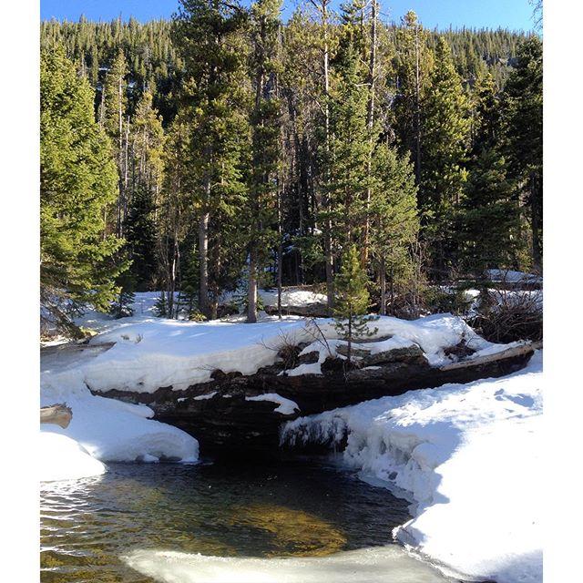 wild-basin-snow-hike